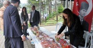 En Güzel Osmanlı Çileği yarışması