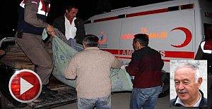 Mantar toplamaya giden yaşlı adama ayı saldırdı