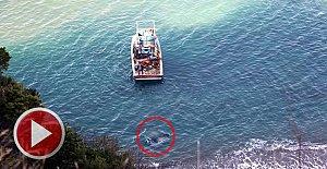 Bariyerleri parçalayıp 60 metreden denize uçtu
