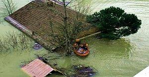 Barajda Mahsur Kalan 3 Köpek Kurtarıldı