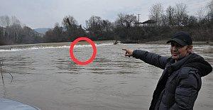 Bartın Irmağı'nda su samuru görüntülendi