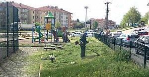 Gölbucağı'nda Parkalar Yaza Hazırlanıyor