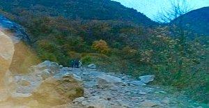 Dev Kaya Yolu Kapattı
