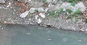 Bartın Irmağına Su Takviyesi