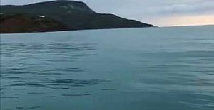 Denizde bir anda önüne çıktı...