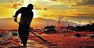 5.Tarım ve İnsan Fotoğraf