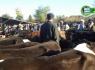 Akçamescit'te çetin pazarlıklar devam ediyor