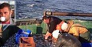Amasralı Balıkçı Feci Şekilde Can...