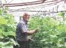 Bartın'da Organik Tarım Konferansı