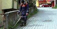 Belediye'den ot temizliği