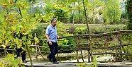 Vali Çınar Küre Dağları Milli Parkı'nda