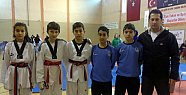 Yıldızlar Taekwondo Grup Müsabakaları Çankırı'da