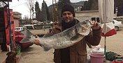 Sahilde Gezerken 12 Kiloluk Levrek Yakaladı