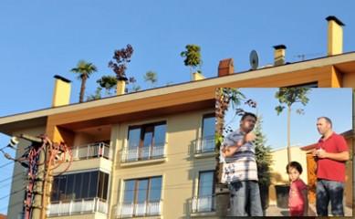 Vinçle ağaç çıkarttı, balkonu orman oldu