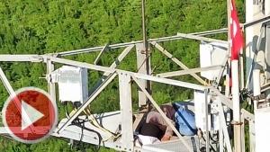 Bartın'da 75 metrelik kuleye çıkan Suriyeli ikna edildi