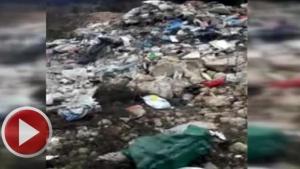 Bartın'da ormanlık alana çöp döktüler
