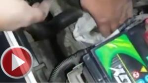 Ticari taksinin motoruna giren kedi kurtarıldı