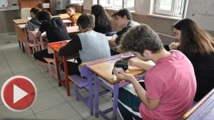 Öğrenciler, Kedileri Okulda Besliyor