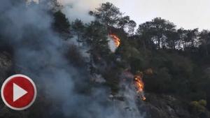 Bartın'da 5 hektarlık alanda yangın