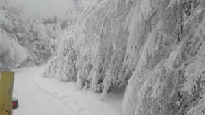 Bartın'da Kar Yolları Kapattı