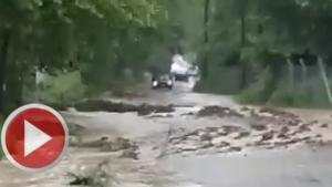 Bartın'da sağanak yağış