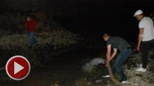 Bartın'da kuruyan ırmaktaki balıklar kurtarıldı