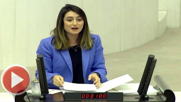 Bankoğlu'nun Termik Santral Önergesi Reddedildi