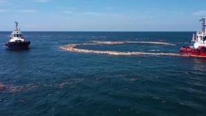 Denize Kadar Ulaşan Tomruklar Toplanıyor